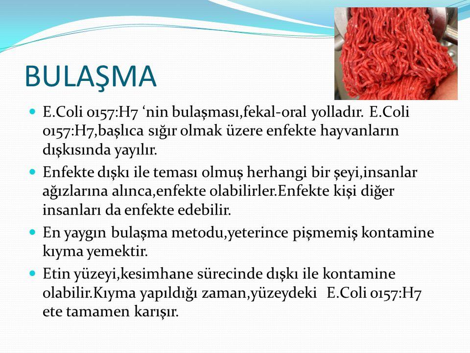BULAŞMA E.Coli o157:H7 'nin bulaşması,fekal-oral yolladır. E.Coli o157:H7,başlıca sığır olmak üzere enfekte hayvanların dışkısında yayılır. Enfekte dı