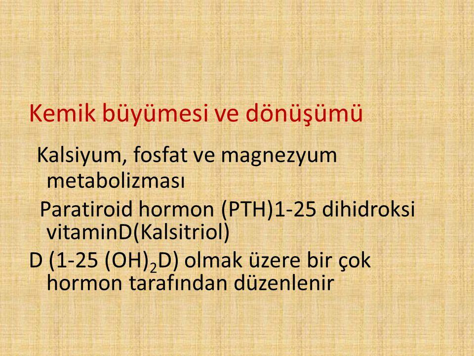 Kemik büyümesi ve dönüşümü Kalsiyum, fosfat ve magnezyum metabolizması Paratiroid hormon (PTH)1-25 dihidroksi vitaminD(Kalsitriol) D (1-25 (OH) 2 D) o