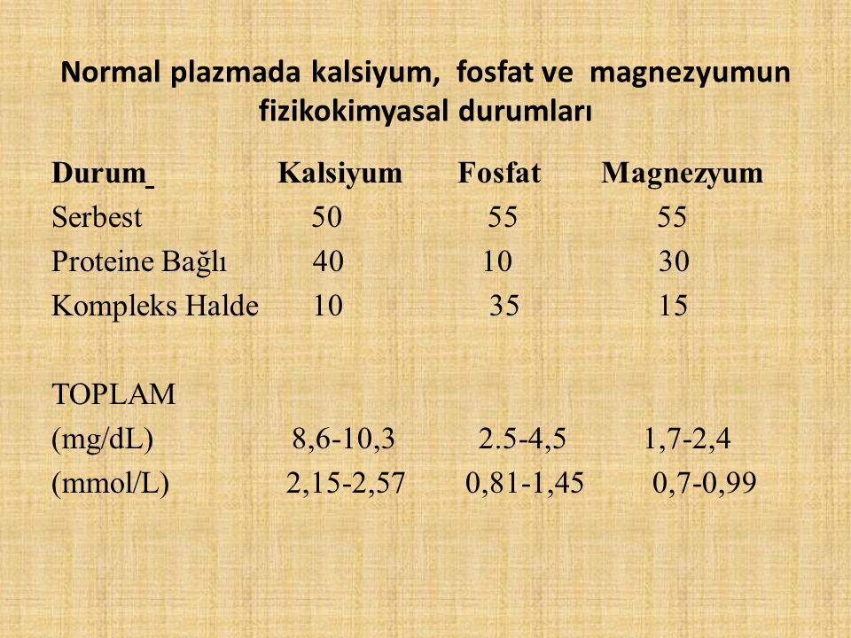 Normal plazmada kalsiyum, fosfat ve magnezyumun fizikokimyasal durumları Durum Kalsiyum Fosfat Magnezyum Serbest 50 55 55 Proteine Bağlı 40 10 30 Komp