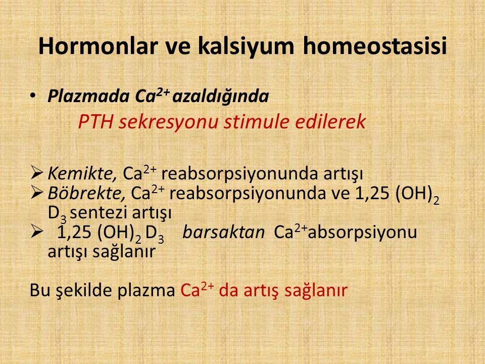 Hormonlar ve kalsiyum homeostasisi Plazmada Ca 2+ azaldığında PTH sekresyonu stimule edilerek  Kemikte, Ca 2+ reabsorpsiyonunda artışı  Böbrekte, Ca