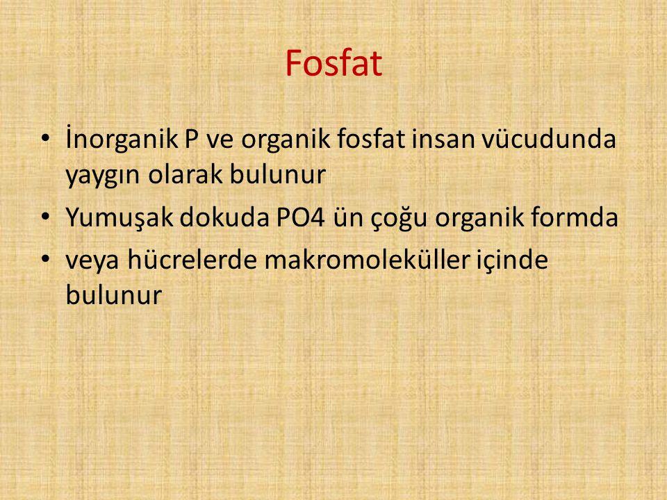 Fosfat İnorganik P ve organik fosfat insan vücudunda yaygın olarak bulunur Yumuşak dokuda PO4 ün çoğu organik formda veya hücrelerde makromoleküller i