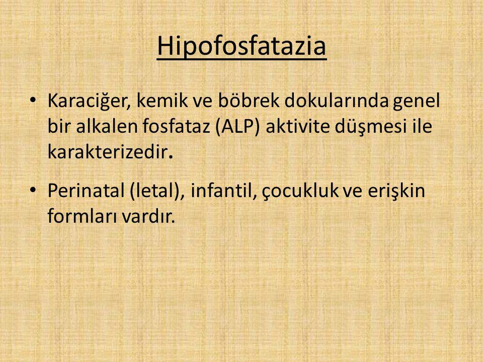 Hipofosfatazia Karaciğer, kemik ve böbrek dokularında genel bir alkalen fosfataz (ALP) aktivite düşmesi ile karakterizedir. Perinatal (letal), infanti