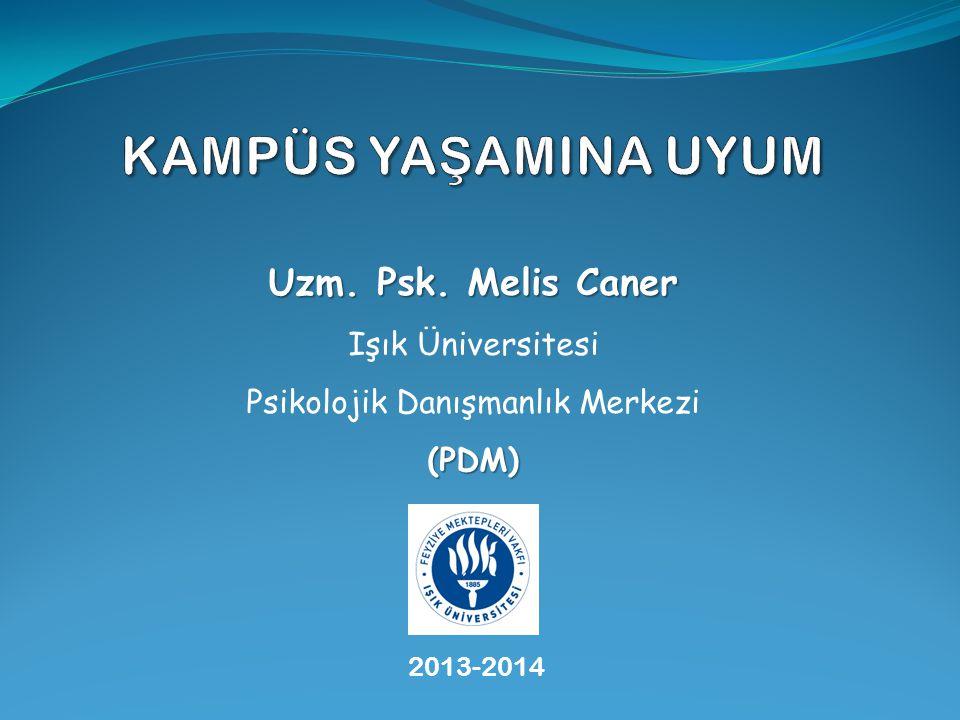 2013-2014 Uzm. Psk. Melis Caner Işık Üniversitesi (PDM) Psikolojik Danışmanlık Merkezi (PDM)