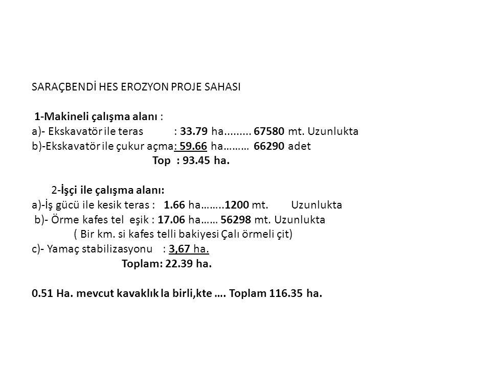 SARAÇBENDİ HES EROZYON PROJE SAHASI 1-Makineli çalışma alanı : a)- Ekskavatör ile teras : 33.79 ha.........