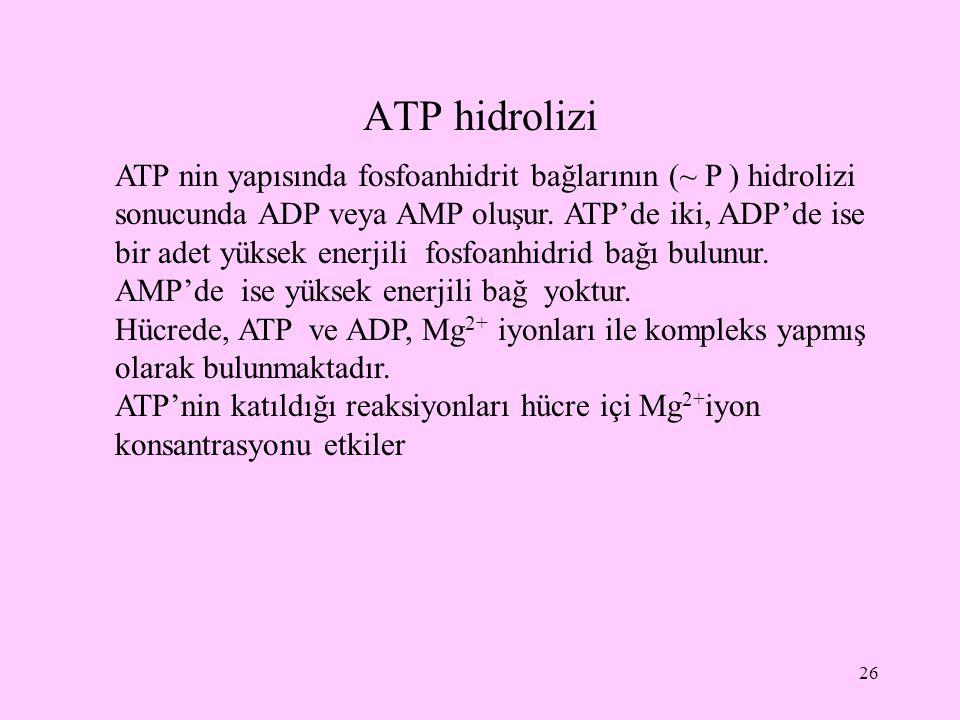 ATP hidrolizi 26 ATP nin yapısında fosfoanhidrit bağlarının (~ P ) hidrolizi sonucunda ADP veya AMP oluşur. ATP'de iki, ADP'de ise bir adet yüksek ene