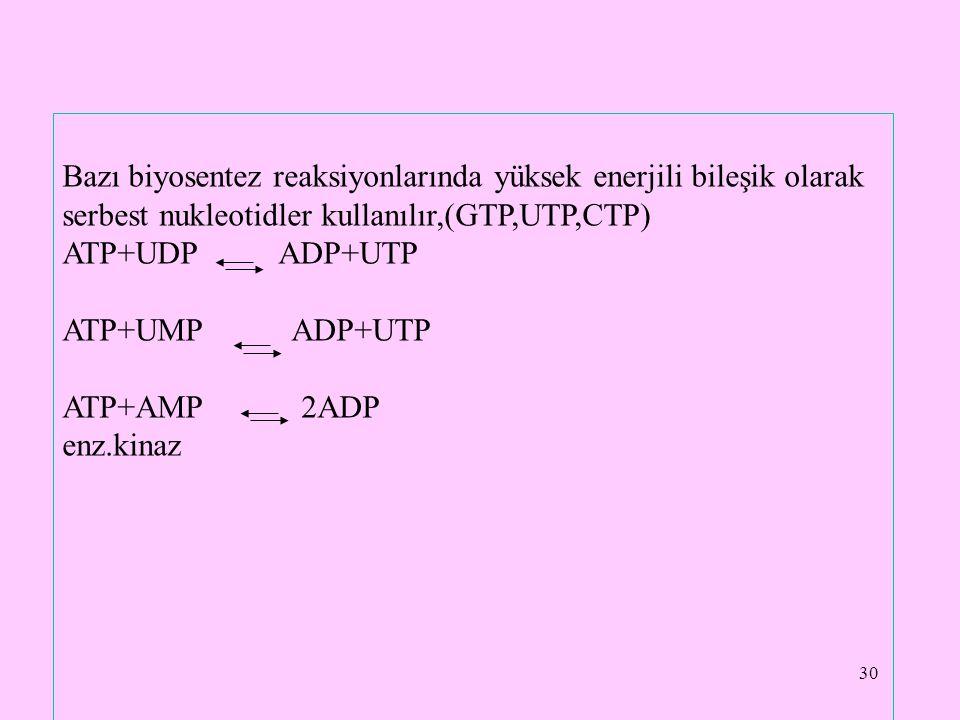 30 Bazı biyosentez reaksiyonlarında yüksek enerjili bileşik olarak serbest nukleotidler kullanılır,(GTP,UTP,CTP) ATP+UDP ADP+UTP ATP+UMP ADP+UTP ATP+A