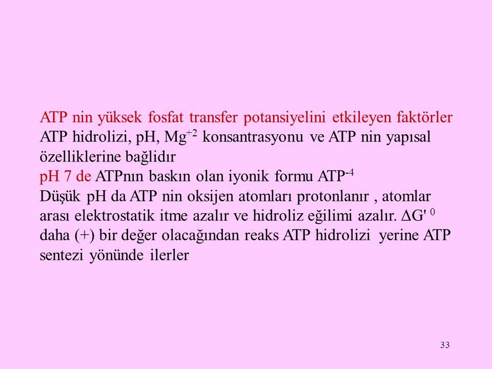 33 ATP nin yüksek fosfat transfer potansiyelini etkileyen faktörler ATP hidrolizi, pH, Mg +2 konsantrasyonu ve ATP nin yapısal özelliklerine bağlidır