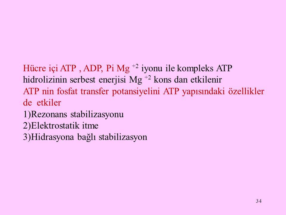 34 Hücre içi ATP, ADP, Pi Mg +2 iyonu ile kompleks ATP hidrolizinin serbest enerjisi Mg +2 kons dan etkilenir ATP nin fosfat transfer potansiyelini AT