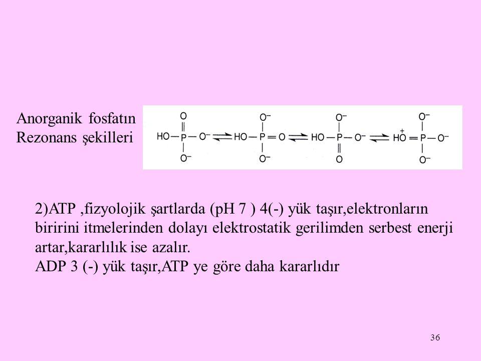 36 Anorganik fosfatın Rezonans şekilleri 2)ATP,fizyolojik şartlarda (pH 7 ) 4(-) yük taşır,elektronların biririni itmelerinden dolayı elektrostatik ge