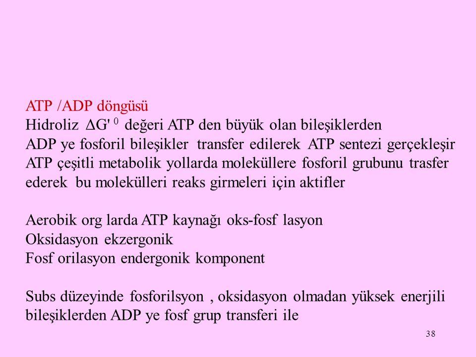 38 ATP /ADP döngüsü Hidroliz ΔG' 0 değeri ATP den büyük olan bileşiklerden ADP ye fosforil bileşikler transfer edilerek ATP sentezi gerçekleşir ATP çe