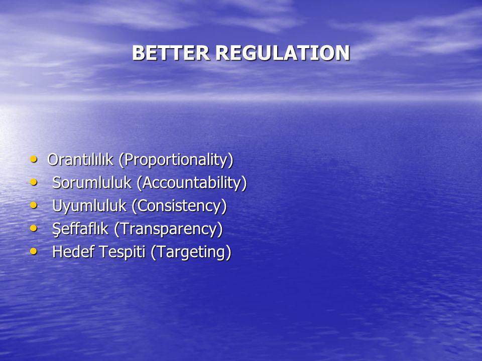 BETTER REGULATION Orantılılık (Proportionality) Orantılılık (Proportionality) Sorumluluk (Accountability) Sorumluluk (Accountability) Uyumluluk (Consistency) Uyumluluk (Consistency) Şeffaflık (Transparency) Şeffaflık (Transparency) Hedef Tespiti (Targeting) Hedef Tespiti (Targeting)