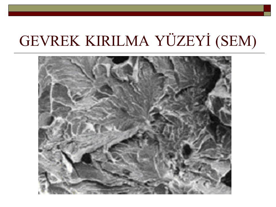 GEVREK KIRILMA YÜZEYİ (SEM)