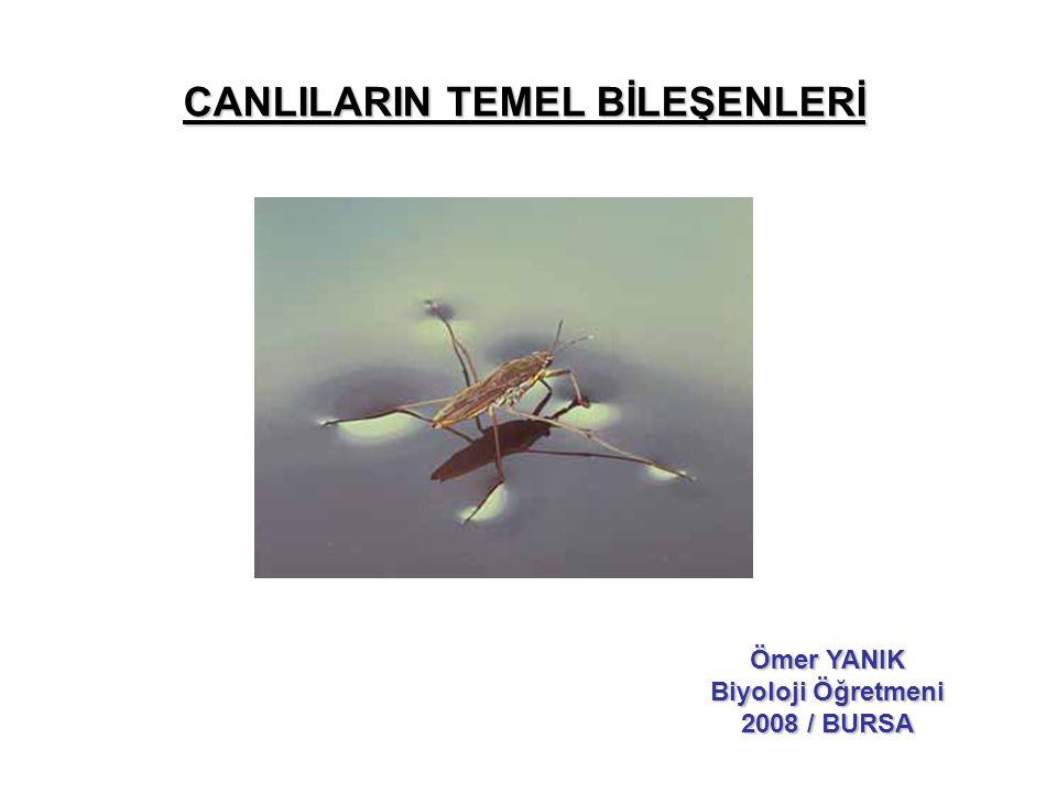 CANLILARIN TEMEL BİLEŞENLERİ Ömer YANIK Biyoloji Öğretmeni 2008 / BURSA