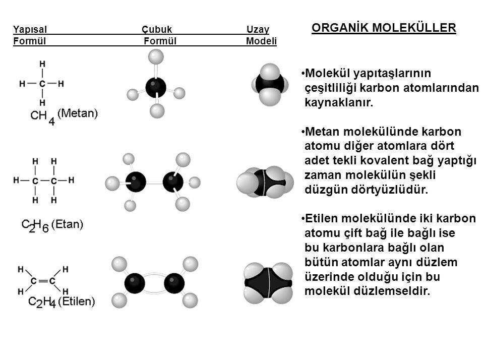 ORGANİK MOLEKÜLLER Molekül yapıtaşlarının çeşitliliği karbon atomlarından kaynaklanır. Metan molekülünde karbon atomu diğer atomlara dört adet tekli k