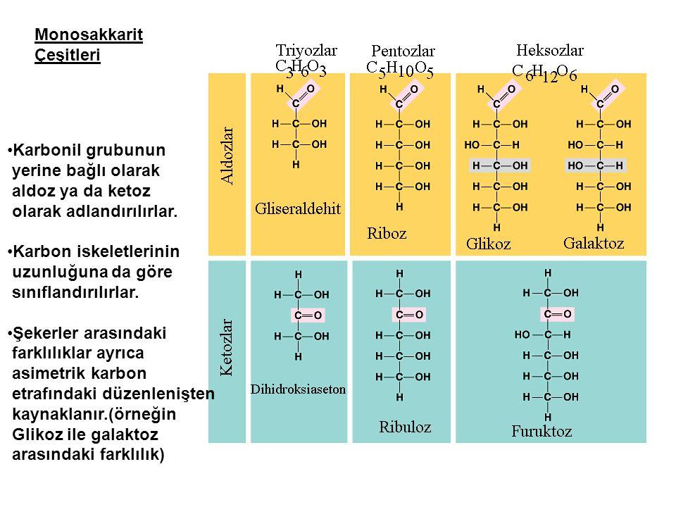 Karbonil grubunun yerine bağlı olarak aldoz ya da ketoz olarak adlandırılırlar. Karbon iskeletlerinin uzunluğuna da göre sınıflandırılırlar. Şekerler