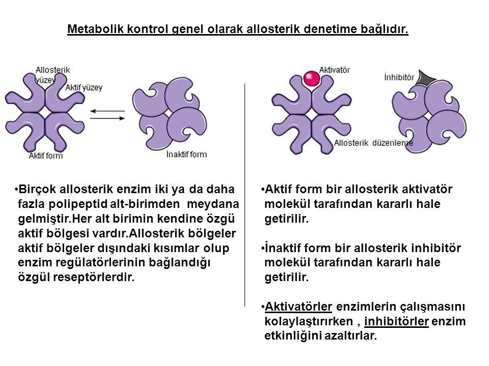 Metabolik kontrol genel olarak allosterik denetime bağlıdır. Birçok allosterik enzim iki ya da daha fazla polipeptid alt-birimden meydana gelmiştir.He