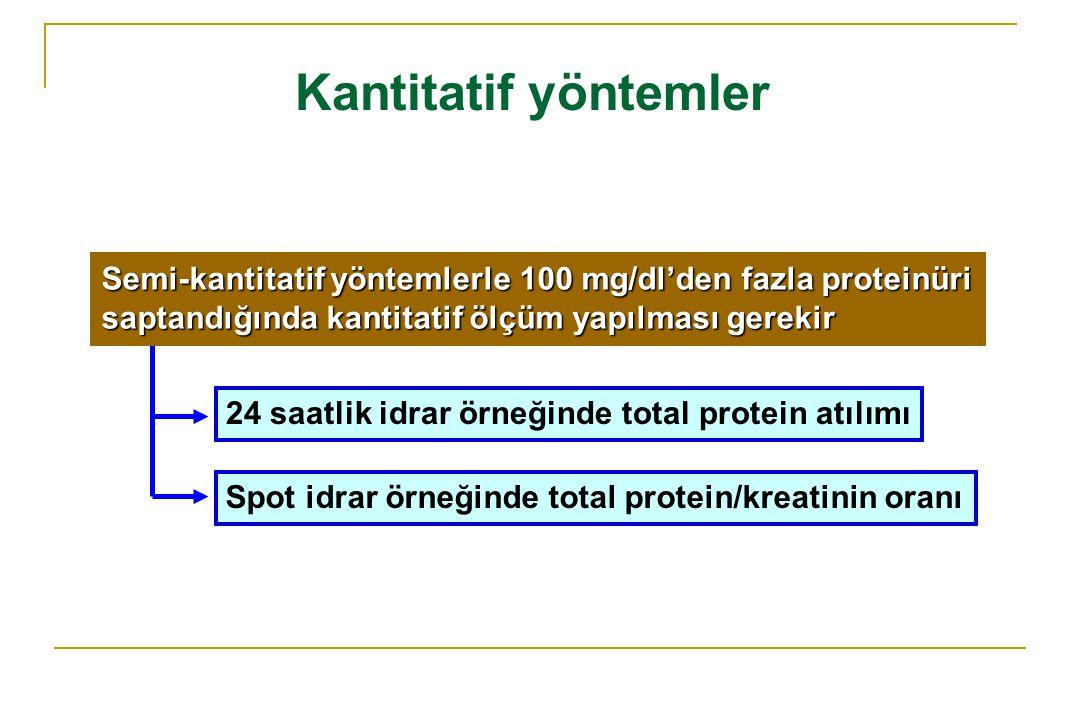 Kantitatif yöntemler 24 saatlik idrar örneğinde total protein atılımı Spot idrar örneğinde total protein/kreatinin oranı Semi-kantitatif yöntemlerle 1