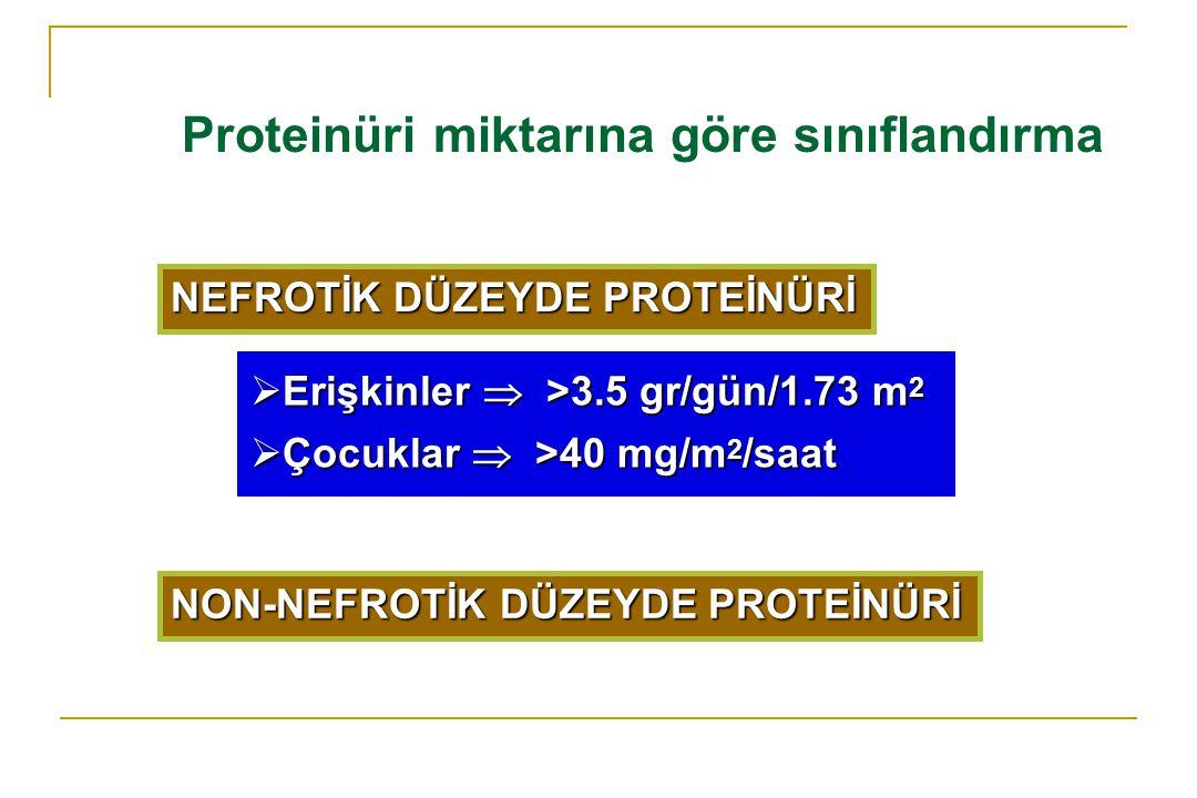 Proteinüri miktarına göre sınıflandırma NEFROTİK DÜZEYDE PROTEİNÜRİ  Erişkinler  >3.5 gr/gün/1.73 m 2  Çocuklar  >40 mg/m 2 /saat NON-NEFROTİK DÜZ