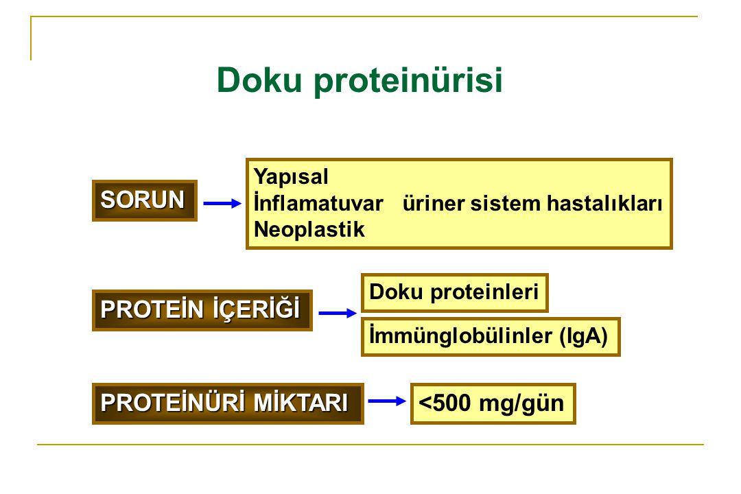 Doku proteinürisi SORUN Yapısal İnflamatuvar üriner sistem hastalıkları Neoplastik PROTEİNÜRİ MİKTARI <500 mg/gün PROTEİN İÇERİĞİ Doku proteinleri İmm