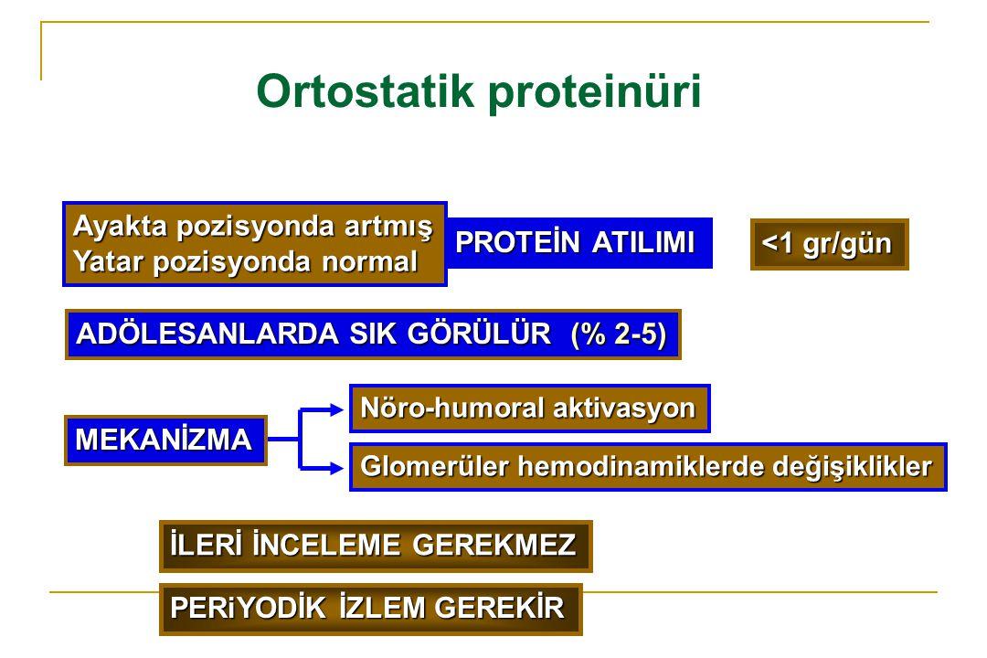 Ortostatik proteinüri Ayakta pozisyonda artmış Yatar pozisyonda normal PROTEİN ATILIMI Nöro-humoral aktivasyon Glomerüler hemodinamiklerde değişiklikl