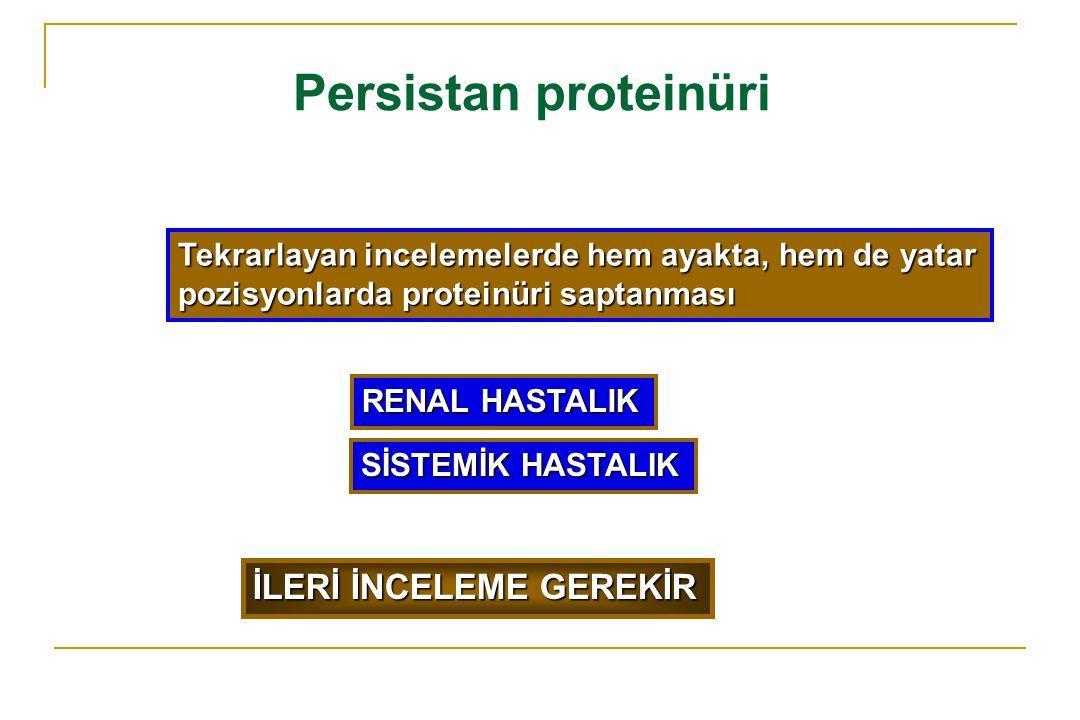 Persistan proteinüri Tekrarlayan incelemelerde hem ayakta, hem de yatar pozisyonlarda proteinüri saptanması İLERİ İNCELEME GEREKİR RENAL HASTALIK SİST