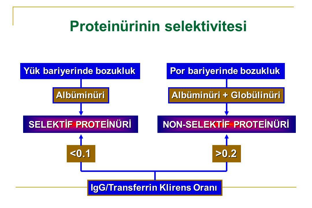 Proteinürinin selektivitesi SELEKTİF PROTEİNÜRİ SELEKTİF PROTEİNÜRİ NON-SELEKTİF PROTEİNÜRİ NON-SELEKTİF PROTEİNÜRİ IgG/Transferrin Klirens Oranı <0.1