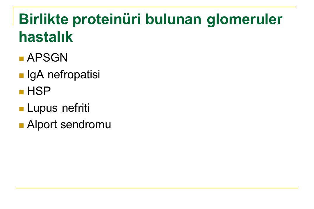 Birlikte proteinüri bulunan glomeruler hastalık APSGN IgA nefropatisi HSP Lupus nefriti Alport sendromu