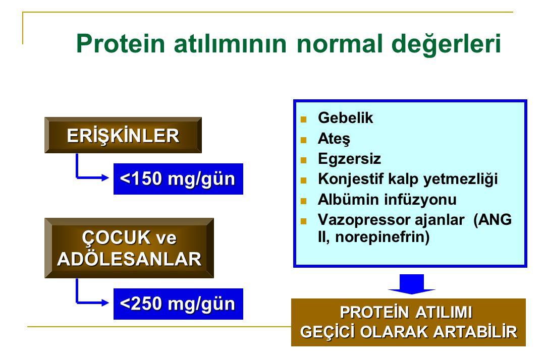İdrardaki proteinin kaynağı Glomerüllerden filtre edilen ve proksimal tübüler geri emilimden kaçan PLAZMA PROTEİNLERİ Tübüler hücreler tarafından salgılanan veya tübüler hücre hasarı sonucu idrara geçen BÖBREK DOKU PROTEİNLERİ Mesane, üretra ve aksesuar bezlerden salgılanan veya doku hasarı ve inflamasyon sonucu idrara geçen ÜRİNER SİSTEM PROTEİNLERİ