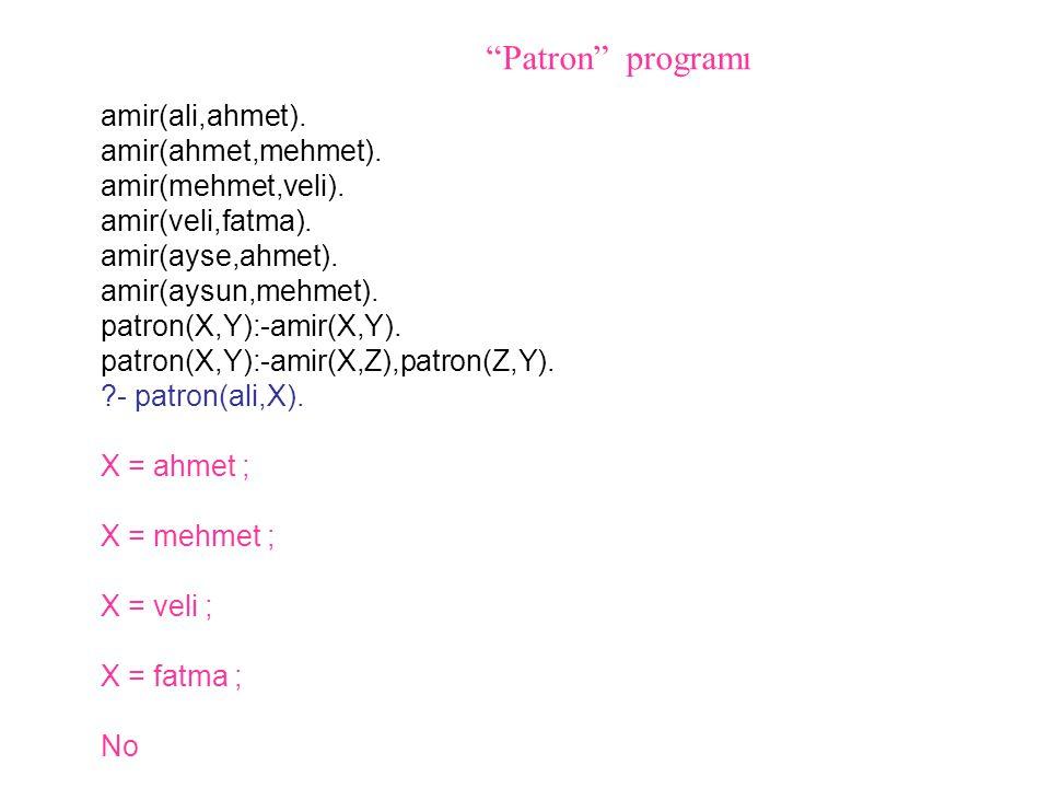 amir(ali,ahmet). amir(ahmet,mehmet). amir(mehmet,veli). amir(veli,fatma). amir(ayse,ahmet). amir(aysun,mehmet). patron(X,Y):-amir(X,Y). patron(X,Y):-a
