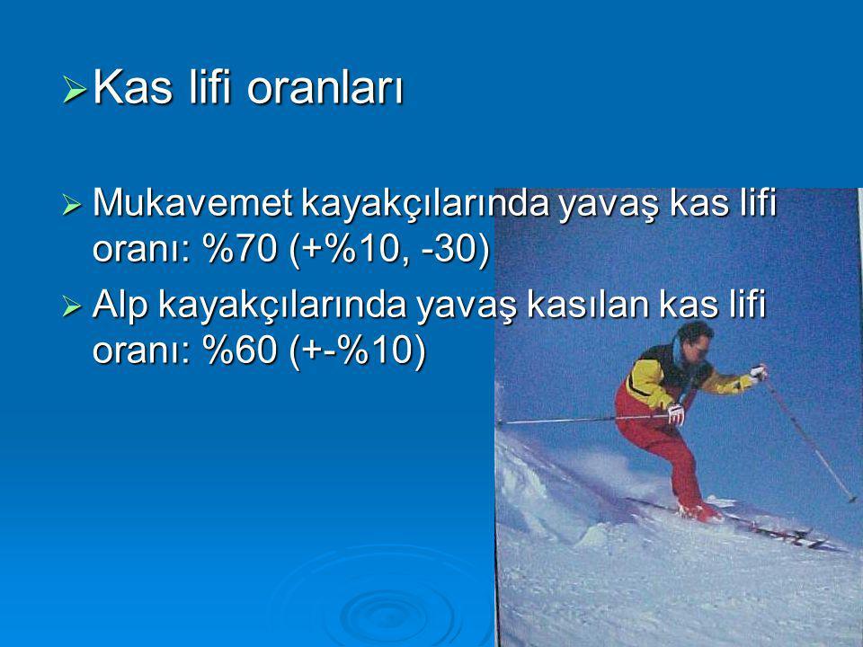  Kas lifi oranları  Mukavemet kayakçılarında yavaş kas lifi oranı: %70 (+%10, -30)  Alp kayakçılarında yavaş kasılan kas lifi oranı: %60 (+-%10)