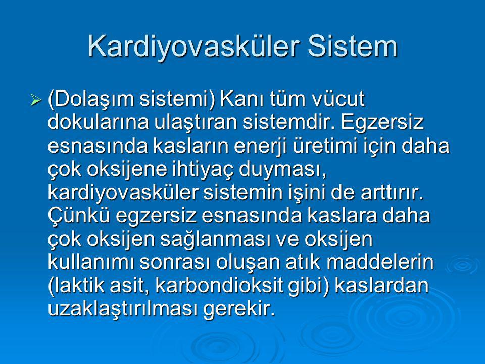 Kardiyovasküler Sistem  (Dolaşım sistemi) Kanı tüm vücut dokularına ulaştıran sistemdir.