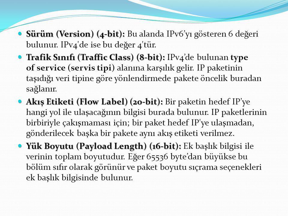 Sürüm (Version) (4-bit): Sürüm (Version) (4-bit): Bu alanda IPv6'yı gösteren 6 değeri bulunur. IPv4'de ise bu değer 4'tür. Trafik Sınıfı (Traffic Clas