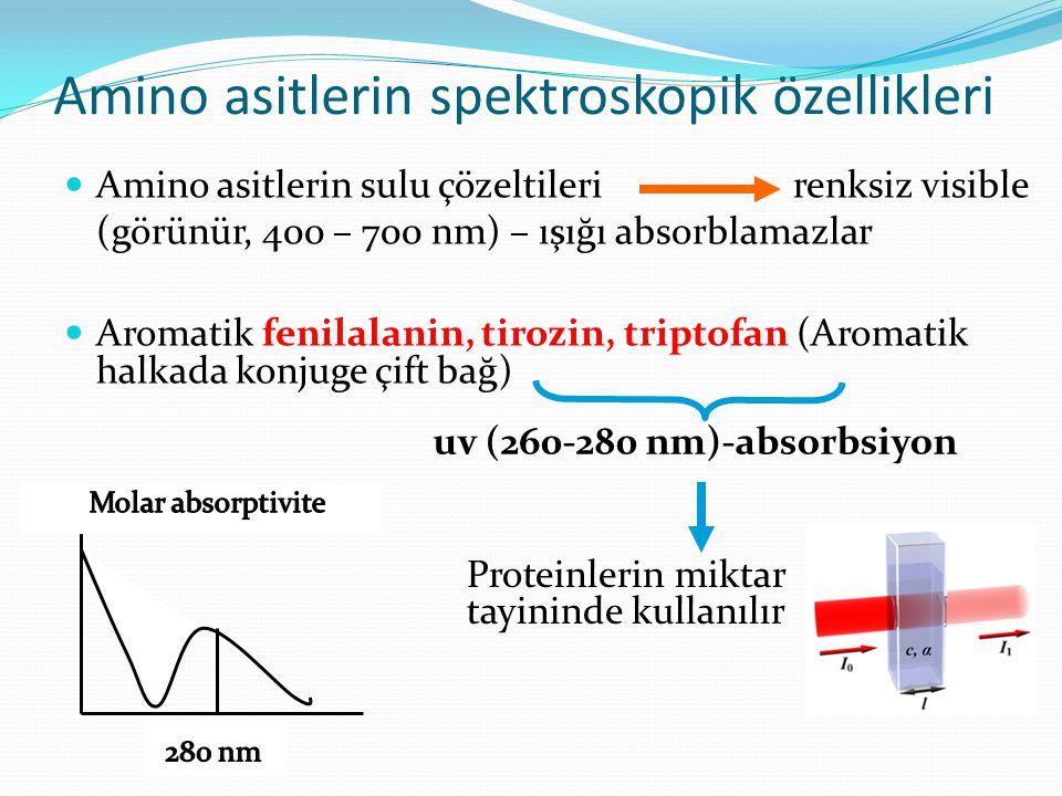 Amino asitlerin spektroskopik özellikleri Amino asitlerin sulu çözeltileri renksiz visible (görünür, 400 – 700 nm) – ışığı absorblamazlar Aromatik fen