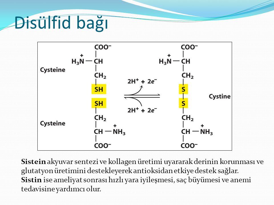 Sistein akyuvar sentezi ve kollagen üretimi uyararak derinin korunması ve glutatyon üretimini destekleyerek antioksidan etkiye destek sağlar. Sistin i