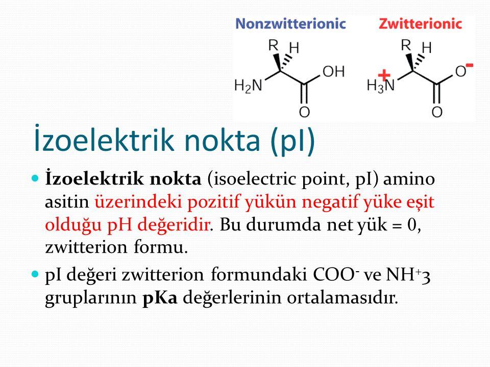 İzoelektrik nokta (pI) İzoelektrik nokta (isoelectric point, pI) amino asitin üzerindeki pozitif yükün negatif yüke eşit olduğu pH değeridir. Bu durum