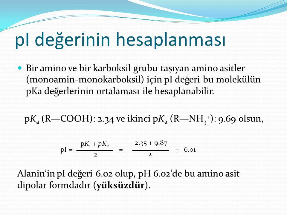 pI değerinin hesaplanması Bir amino ve bir karboksil grubu taşıyan amino asitler (monoamin-monokarboksil) için pI değeri bu molekülün pKa değerlerinin