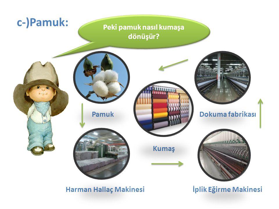 c-)Pamuk: Pamuk Dokuma fabrikası Kumaş Harman Hallaç Makinesi İplik Eğirme Makinesi Peki pamuk nasıl kumaşa dönüşür?