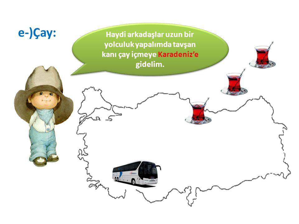e-)Çay: Haydi arkadaşlar uzun bir yolculuk yapalımda tavşan kanı çay içmeye Karadeniz'e gidelim.