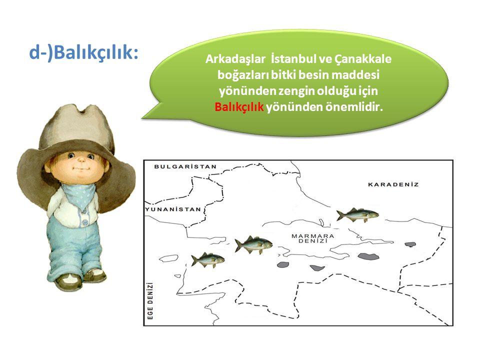 d-)Balıkçılık: Arkadaşlar İstanbul ve Çanakkale boğazları bitki besin maddesi yönünden zengin olduğu için Balıkçılık yönünden önemlidir.