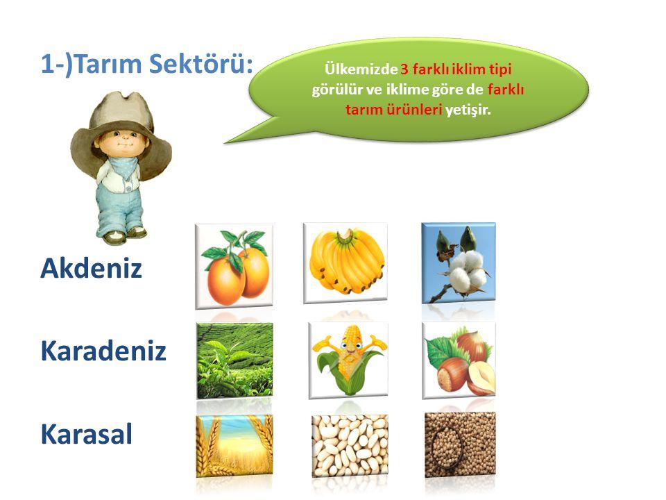1-)Tarım Sektörü: Akdeniz Karadeniz Karasal Ülkemizde 3 farklı iklim tipi görülür ve iklime göre de farklı tarım ürünleri yetişir.