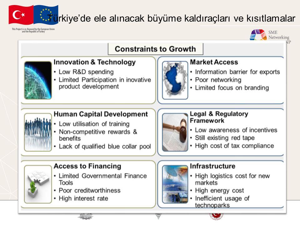 Türkiye'de ele alınacak büyüme kaldıraçları ve kısıtlamalar