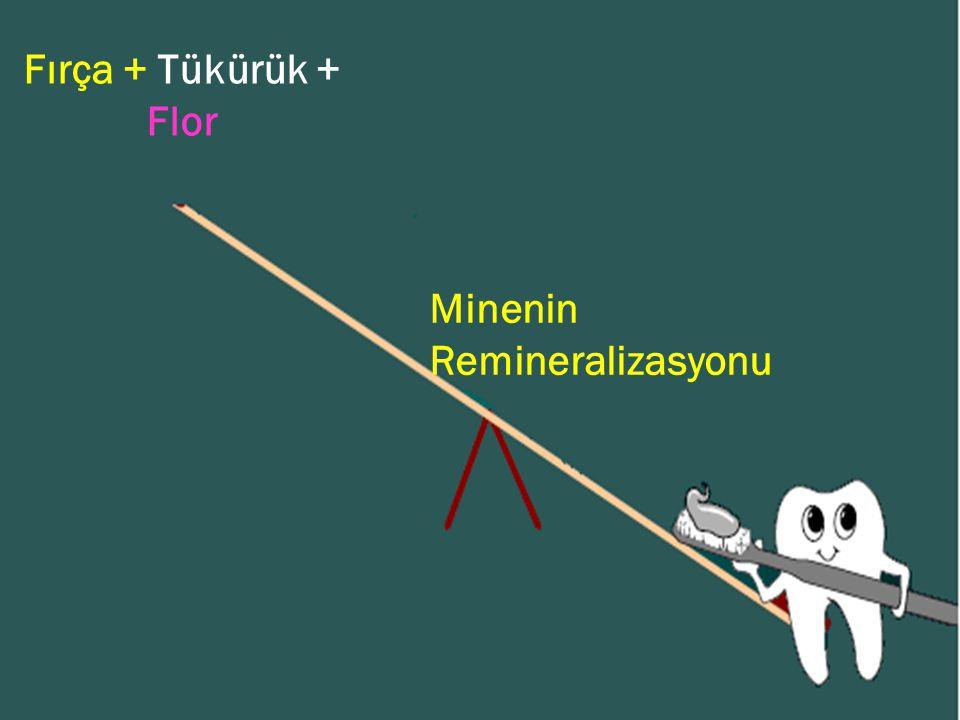 Fırça + Tükürük + Flor Minenin Remineralizasyonu