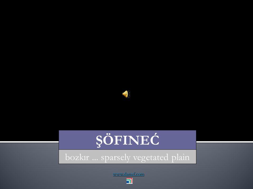 www.danef.com ŞÖFI yüzey... surface