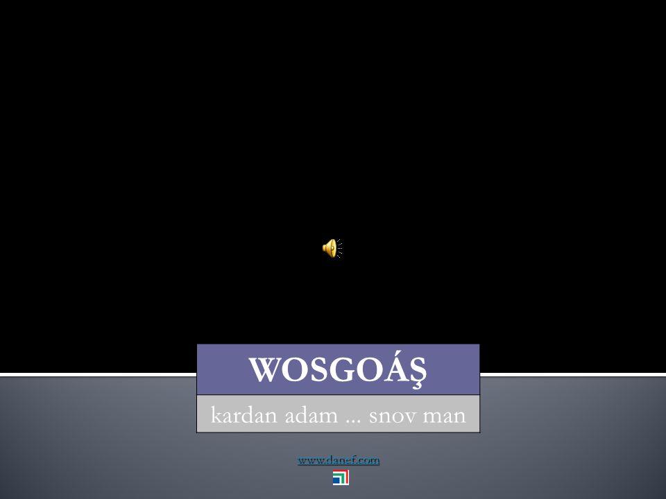 www.danef.com WOSEPS kırağı... dew
