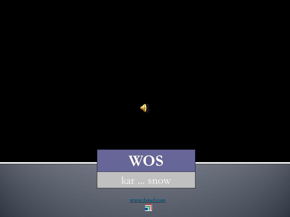 www.danef.com WOS Ḣ OT tipi... snowstorm