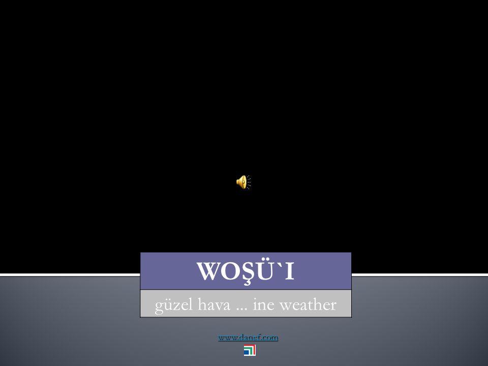 www.danef.com WOŞÜ dolu... hail