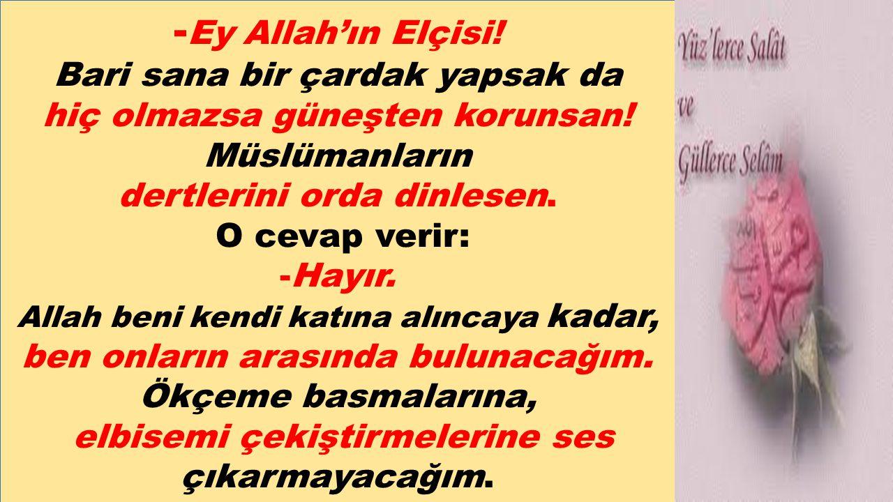 - Ey Allah'ın Elçisi! Bari sana bir çardak yapsak da hiç olmazsa güneşten korunsan! Müslümanların dertlerini orda dinlesen. O cevap verir: -Hayır. All