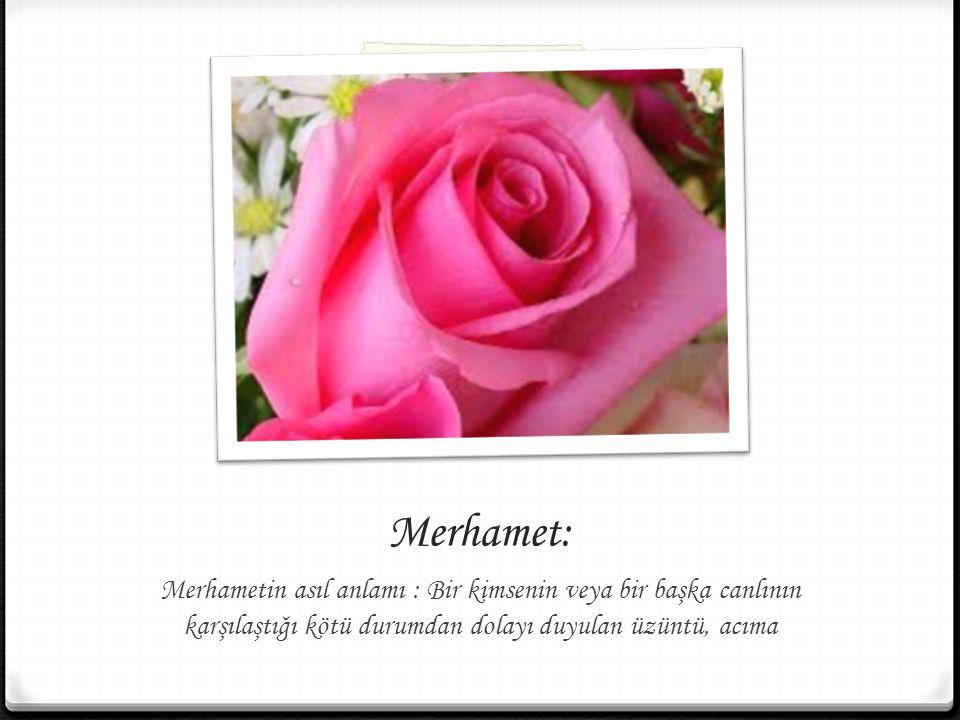 Merhamet: Merhametin asıl anlamı : Bir kimsenin veya bir başka canlının karşılaştığı kötü durumdan dolayı duyulan üzüntü, acıma