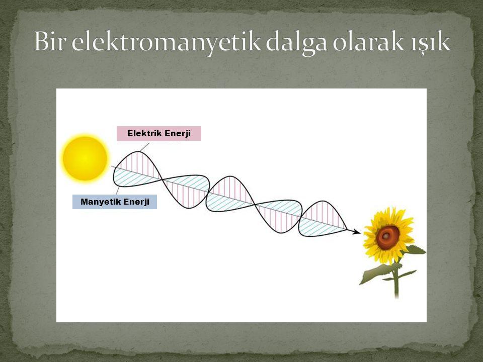 Elektrik Enerji Manyetik Enerji