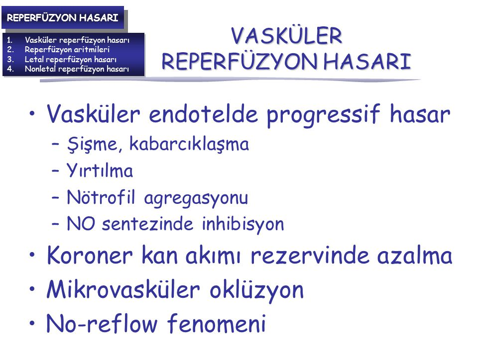 VASKÜLER REPERFÜZYON HASARI Vasküler endotelde progressif hasar –Şişme, kabarcıklaşma –Yırtılma –Nötrofil agregasyonu –NO sentezinde inhibisyon Koroner kan akımı rezervinde azalma Mikrovasküler oklüzyon No-reflow fenomeni 1.Vasküler reperfüzyon hasarı 2.Reperfüzyon aritmileri 3.Letal reperfüzyon hasarı 4.Nonletal reperfüzyon hasarı 1.Vasküler reperfüzyon hasarı 2.Reperfüzyon aritmileri 3.Letal reperfüzyon hasarı 4.Nonletal reperfüzyon hasarı REPERFÜZYON HASARI